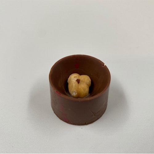 Hazelnoot-praline-melk-chocolade-
